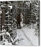 Sundling Creek Snowshoe Canvas Print