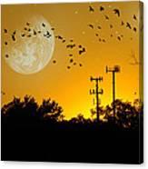 Sundown Fantasy Orange Canvas Print