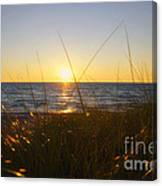 Sundown Jogging Canvas Print