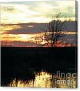 Sundown Lacassine Nwr Canvas Print
