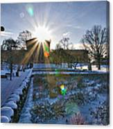 Sunflare At The Back Canvas Print