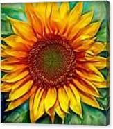 Sunflower - Paint Edition Canvas Print