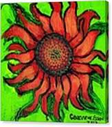 Sunflower 3 Canvas Print