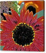Sunflower 31 Canvas Print