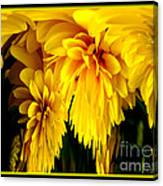Sunflower Abstract 1 Canvas Print