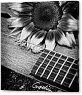 Sunflower And Guitar Canvas Print