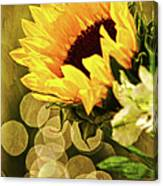 Sunflower And The Lights Canvas Print