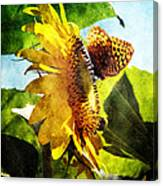 Sunflower Butterfly And Bee Canvas Print