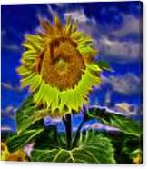 Sunflower Electrified Canvas Print