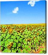 Sunflower Fields Forever Canvas Print