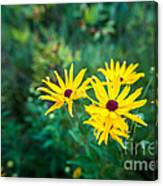Sunflower Group Session Canvas Print