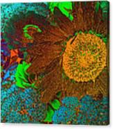 Sunflower In Brown Canvas Print
