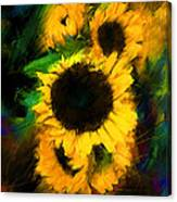 Sunflower In Motion Canvas Print