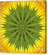 Sunflower Kaleidoscope 3 Canvas Print
