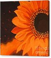 Sunflower Mystique Canvas Print