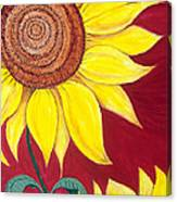 Sunflower On Red Canvas Print