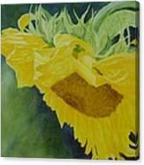 Sunflower Original Oil Painting Colorful Bright Sunflowers Art Floral Artist K. Joann Russell  Canvas Print