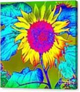 Sunflower Pop Canvas Print