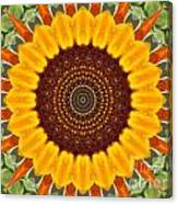 Sunflower Power Canvas Print