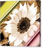 Sunflower Rail Canvas Print