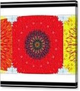 Sunflower Trio - Triptych - Flowers Canvas Print