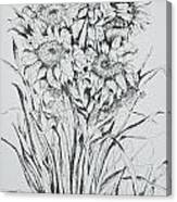 Sunflowers Black And White Canvas Print