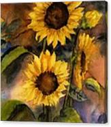 Sunflowers For Cyndi Canvas Print