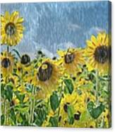 Sunflowers In The Rain Canvas Print