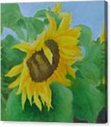 Sunflowers In The Wind Colorful Original Sunflower Art Oil Painting Artist K Joann Russell           Canvas Print