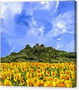 Sunflowers In Tuscany Canvas Print