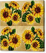 Sunflowers Pattern Country Field On Wooden Board Canvas Print