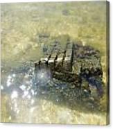 Sunken Glory Canvas Print