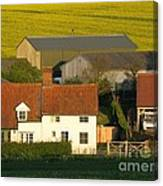 Sunlit Farm Canvas Print