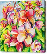 Sunlit Plumeria Canvas Print