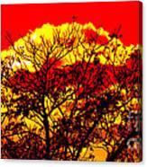Sunnsett Canvas Print