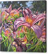 Sunny Daylilly Canvas Print