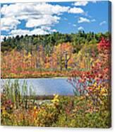 Sunny Fall Day Canvas Print