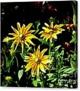 Sunny Flowers Canvas Print