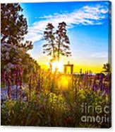 Sunny Morning Canvas Print