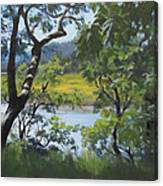 Sunny River Canvas Print