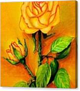 Sunny Rose Canvas Print