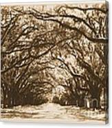 Sunny Southern Day With Old World Framing Canvas Print