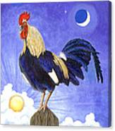 Sunny The Rooster Canvas Print