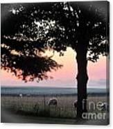 Sunrise 365 35 Canvas Print