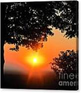 Sunrise 365 38 Canvas Print