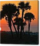 Sunrise And Group Of Palm Trees Canvas Print