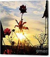 Sunrise Angel Canvas Print