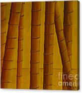 Sunrise At Bamboo Grove Canvas Print