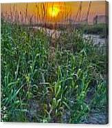 Sunrise At Myrtle Beach Canvas Print