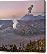 sunrise at vulcano Bromo with sea of sand vulcano Semeru with eruption Java Indonesia Canvas Print